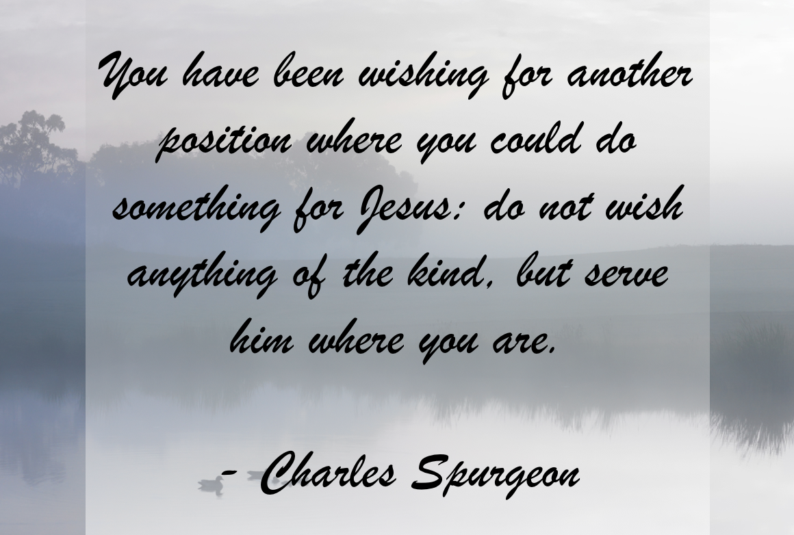 Do You Consider Yourself a Steward?