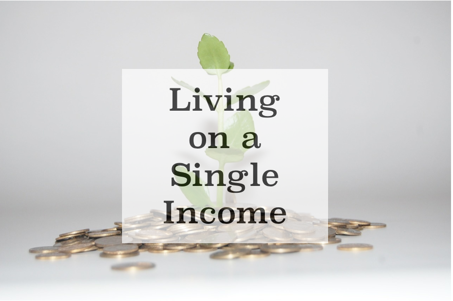 Tips to Live on A Single Income